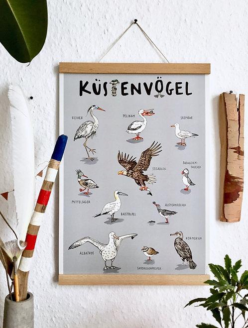 "Poster ""Küstenvögel"" Recyclingpapier"