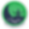 Logo Chandra.png