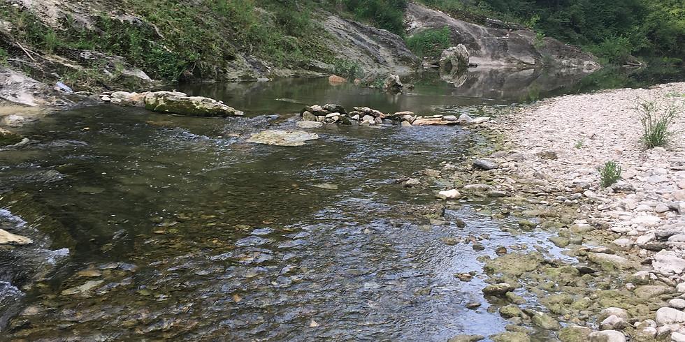 water trekking nature hike