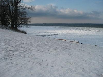 snow 2010.JPG