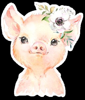 piggy_01.png