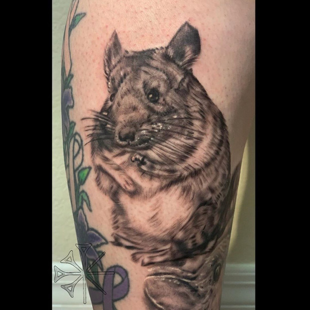 Hamster Tattoo By Rafael At Fine Ink Stu
