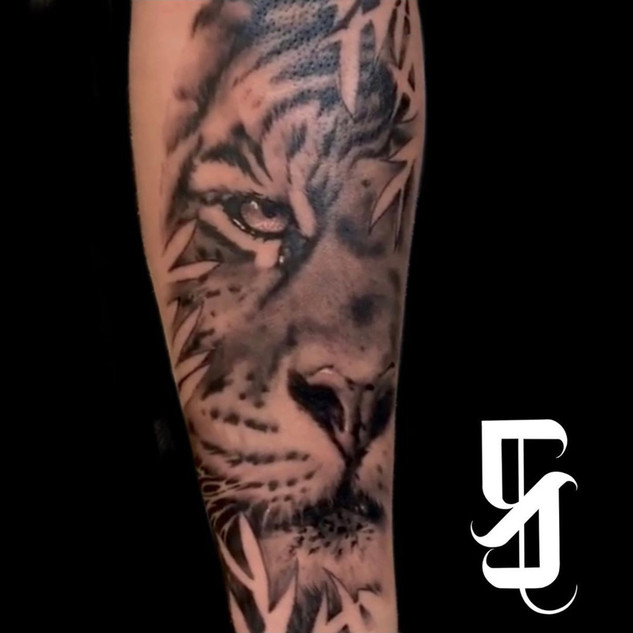 Tiger Tattoo By Sargent At Fine Ink Stud