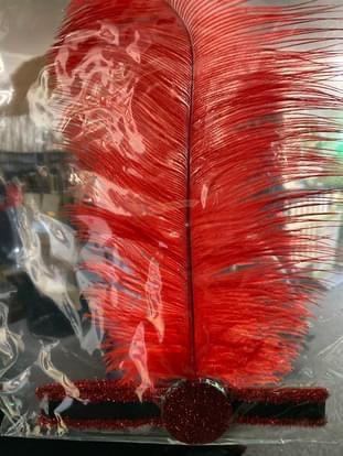 Red Feather Head piece