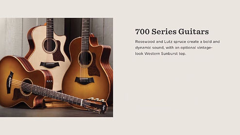 MUSICIANS 1ST CHOICE TAYLOR 700 SERIES GUITARS