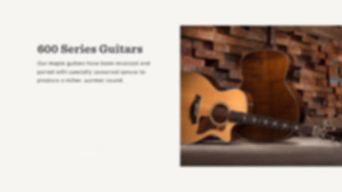 MUSICIANS 1ST CHOICE TAYLOR 600 SERIES GUITARS