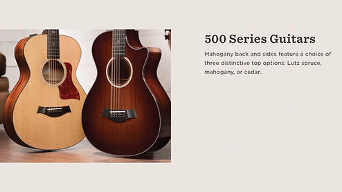 MUSICIANS 1ST CHOICE TAYLOR 500 SERIES GUITARS