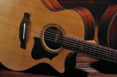 Musicians 1st Choice Ibanez Acoustic Guitars