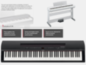 YAMAHA P255B 88-key black digital piano with ebony top board. Includes PA300C power adapter, music rest and FC4A sustain pedal - $1299.95