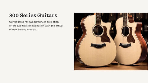 MUSICIANS 1ST CHOICE TAYLOR 800 SERIES GUITARS