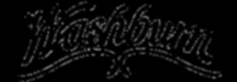 MUSICIANS 1ST CHOICE WASHBURN BASS GUITARS