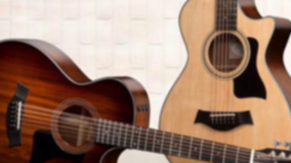 Musicians 1st Choice Taylor Acoustic Guitars