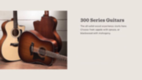 MUSICIANS 1ST CHOICE TAYLOR 300 SERIES GUITARS