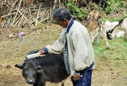 Nepal-Trek5-1024x698