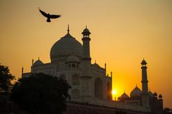 Agra - Sunset Taj Mahal
