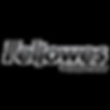 Logo-Fellowes-Russia_2 копия.png