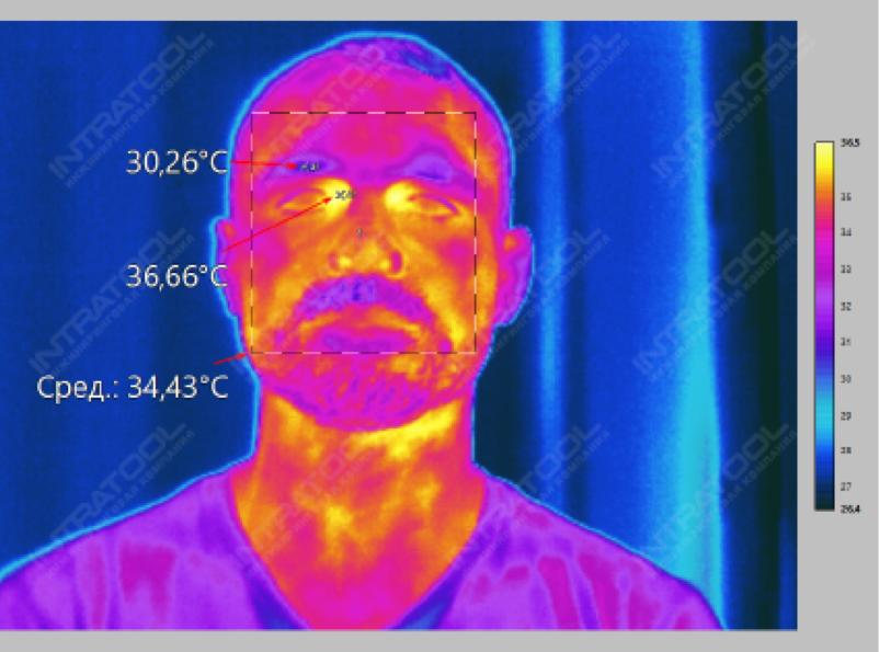 Рис. 6. Измерение средней, максимальной и минимальной температуры в области лица
