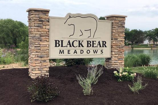 Black Bear 1.jpg
