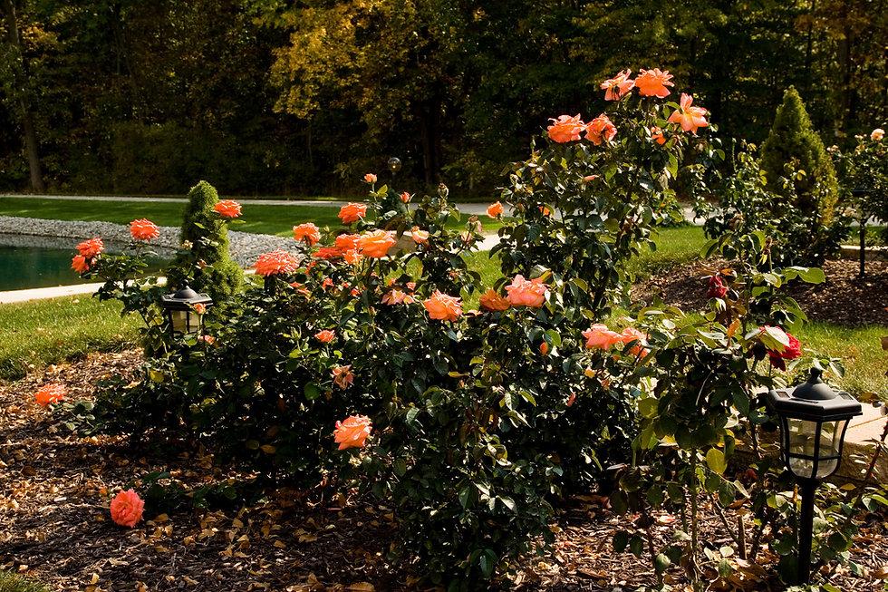 Pet Rest, Inc. | Ossian Indiana Pet Rest Cemetery | Garden ...