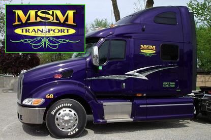 MSM1.jpg