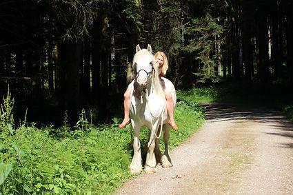 Ich liebe Tiere - in meiner Freizeit reite ich mit meinem Pferd Samson durch die Wälder