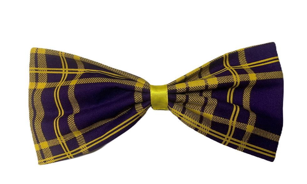 Yellow and Purple bow