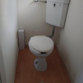 トイレ クロス