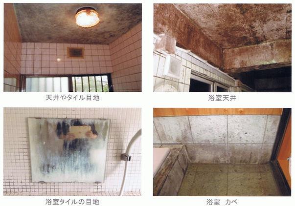 天井カビ、タイル目地カビ、浴室天井カビ