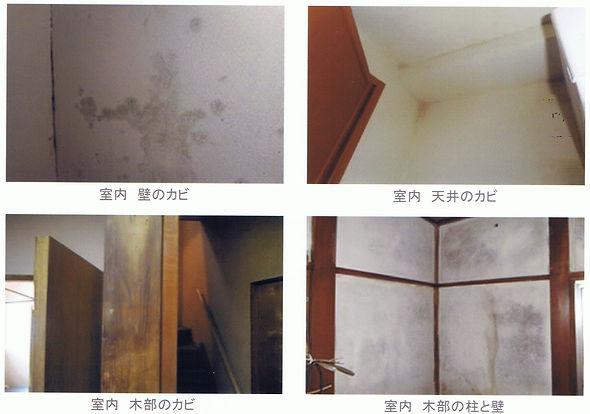 部屋天井、壁、柱、木部カビ