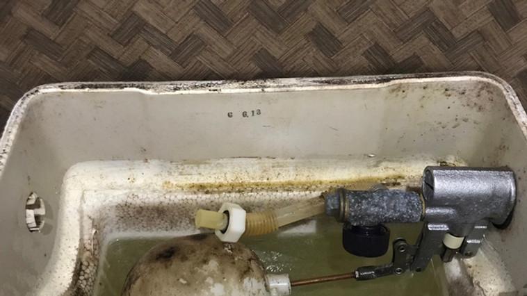 トイレ タンク内 除カビ