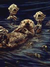 Enhydra lutris: Sea Otter Raft