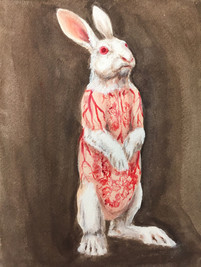 Flayed Rabbit: Albino Sketch