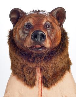 Ursus arctos horribilus, face