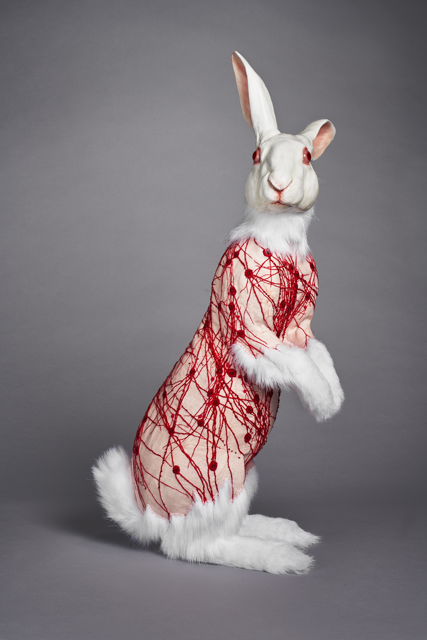 Flayed Rabbit: Albino with Nerves