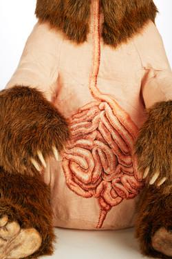 Ursus arctos horribilus, embroidery