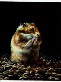Memento mori: Hamster, peanut and hamster skeleton
