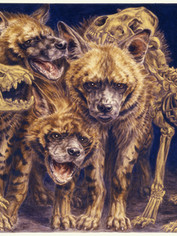 Striped Hyena Clan