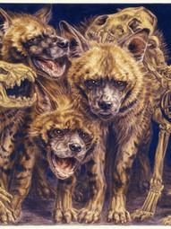 Striped Hyena Clan
