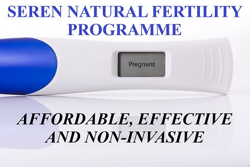 bigstock-Pregnancy-Test-3984118.jpg