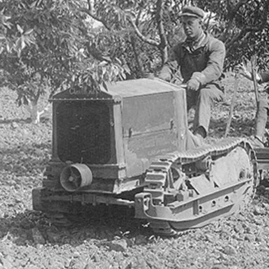 almonds_orchard_with_tractor_march_2014(1).jpg