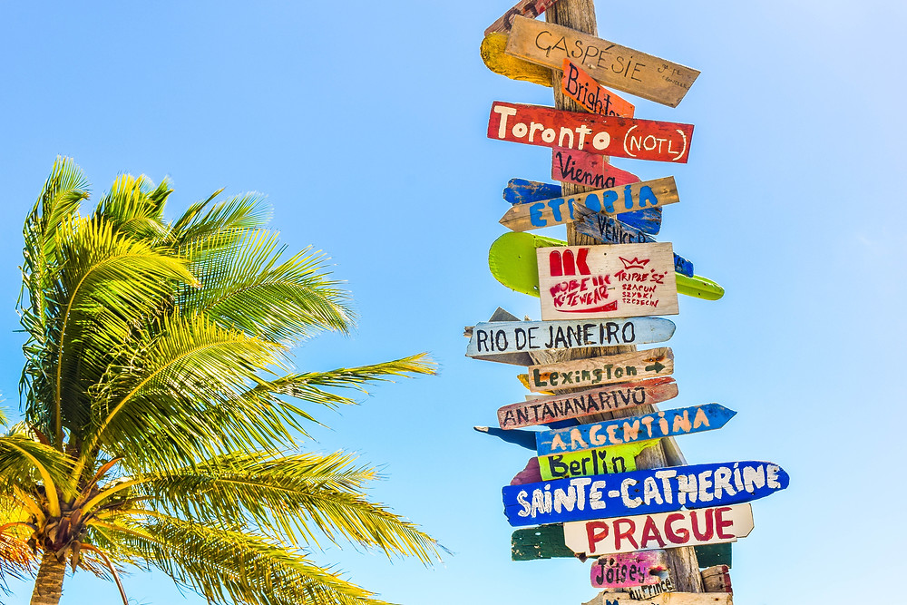 Signs of locations pointing in different directions with a palm tree in the background.