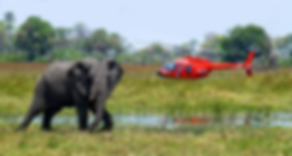 Okavango air rescue
