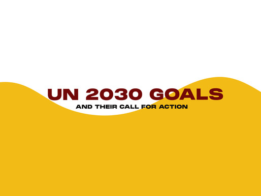 The UN 2030 Goals and Their Call For Action