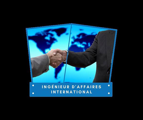 Ingénieur d'affaires international.png