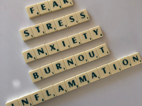The Surprising Truth About Burnout, Stress, Inflammation & Your Immune System