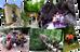 """Делитесь впечатлениями и своими фотографиями в новом фотоальбоме """"ЛЕТО-2015"""""""
