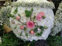 FB_IMG_1593955044084.jpg