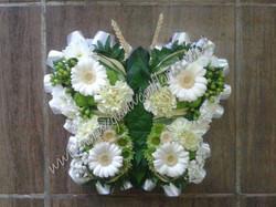 FB_IMG_1593954993040.jpg