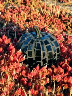 Mini Black Pumpkin