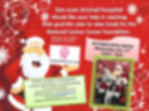 Pet Santa Photo's at San Juan Animal Hospital In Jacksonville, Fl 322120